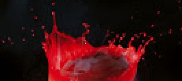 Chasseuse de vampires, 4 de Nalini Singh