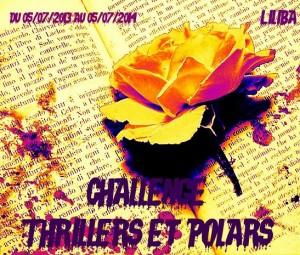 thrillers-et-polars