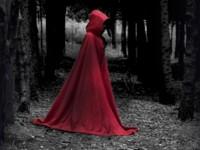 Les âges sombres / Karen Maitland