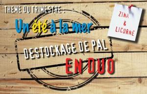 logo Destockage de PAL en duo theme un été à la mer