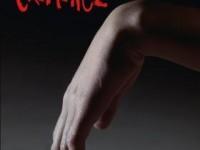 Criminel / Karin Slaughter