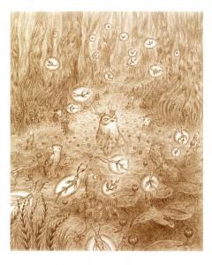 illustration autre herbier par amandine labarre