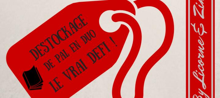 Déstockage de PAL en duo, le vrai défi ! | Novembre  2016 – Février 2017