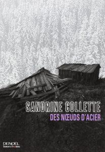 Couverture de Des noeuds d'acier de Sandrine Collette