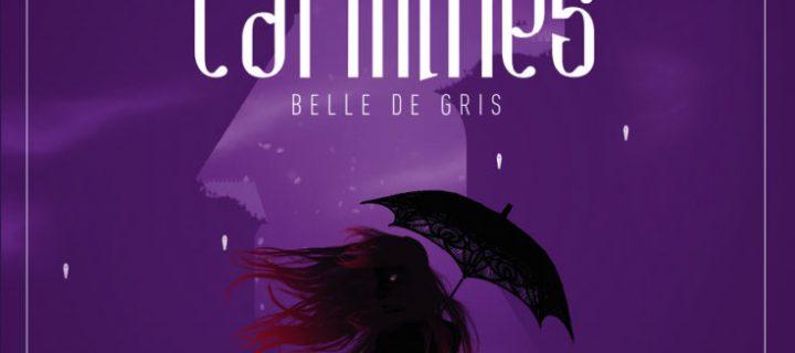 Belle de gris / Ariel Holzl