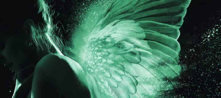 Les ailes d'émeraude / Alexiane de Lys