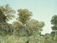 Les grands espaces / Catherine Meurisse