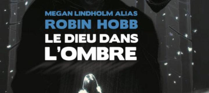 Le dieu dans l' ombre / Megan Lindholm (Robin Hobb)