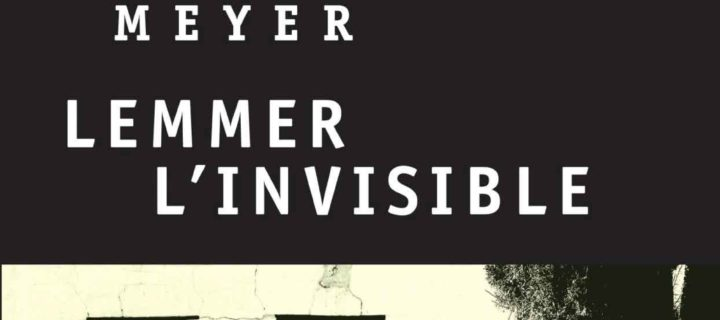 Lemmer l'invisible / Deon Meyer