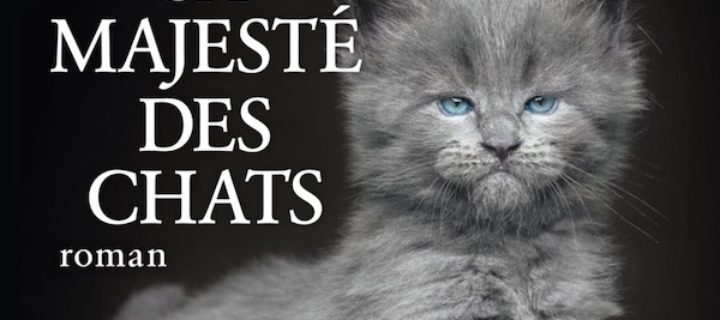 Sa majesté des chats / Bernard Werber